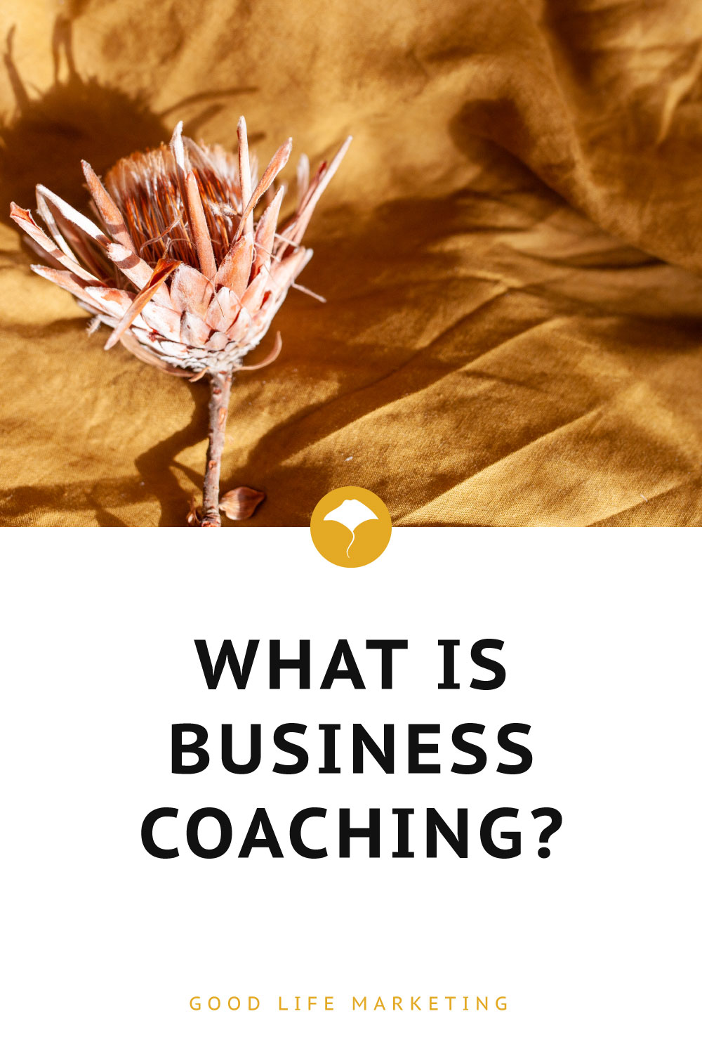 what is business coaching pin