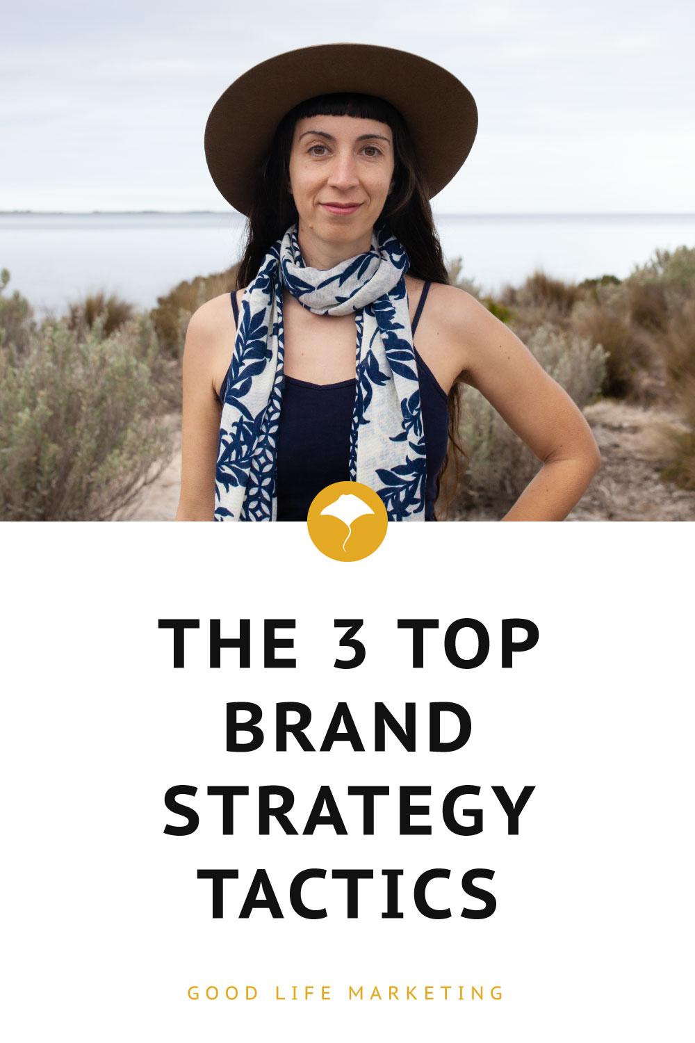 Brand strategy tactics pin